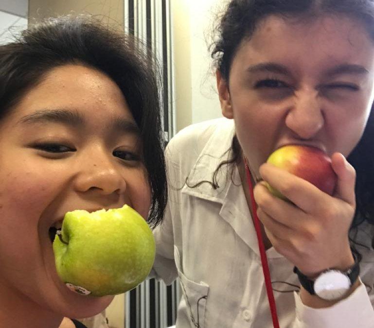 Hannah Affany, 4 Medical School Offers, Gap Year St Olave's Grammar School, Medic Mentor Review